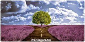 oracion abrir caminos